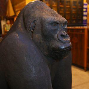 Exceptionnel Gorille en résine taille réelle réalisé par Yves Gaumetou