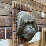 Masque de singe par Yves Gaumetou
